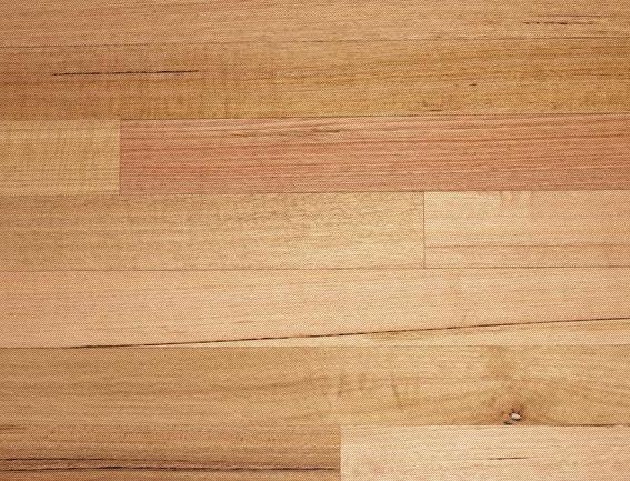 Gloria Timber Flooring